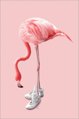 Poster Flamant rose portant des sneakers