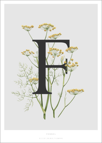 Poster F is for Fennel