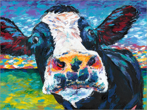 Poster Vache curieuse I