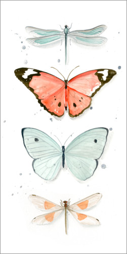 Poster Papillons I
