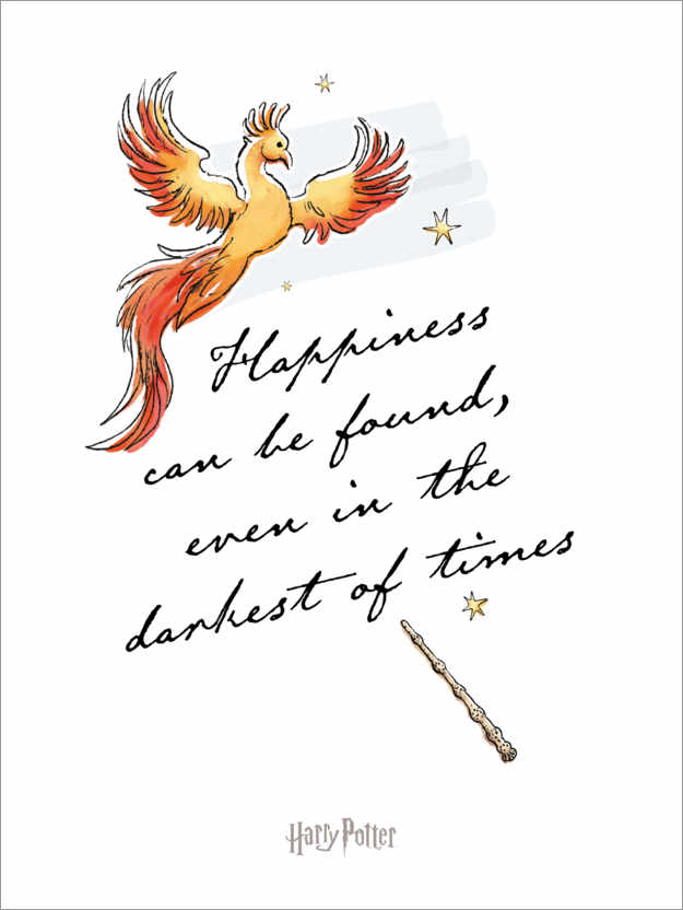 Poster Happiness can be found - Harry Potter Quote