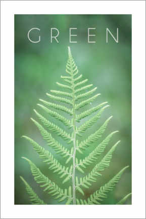 Poster Green 2