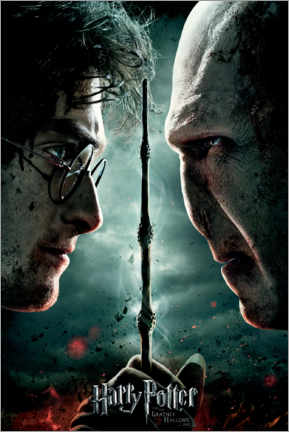 Tableau en bois  The Deathly Hallows II - Duel