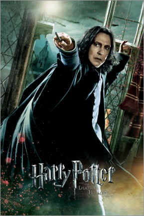 Tableau en PVC  The Deathly Hallows II - Severus Snape Duel