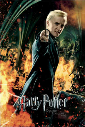 Tableau en bois  The Deathly Hallows II - Draco Malfoy