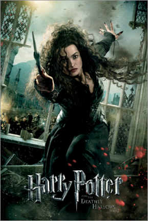 Tableau en verre acrylique  The Deathly Hallows II - Bellatrix Lestrange