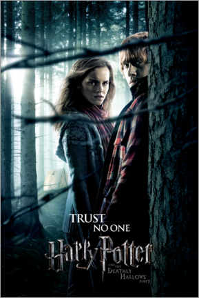 Poster  The Deathly Hallows I - Hermione & Ron