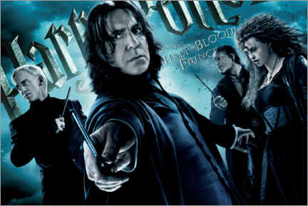 Tableau en aluminium  The Half-Blood Prince - Death Eaters