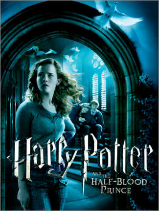 Poster  The Half-Blood Prince - Hermione & Ron