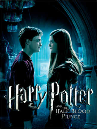 Sticker mural  The Half-Blood Prince - Harry & Ginny