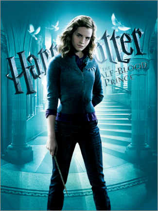 Tableau en bois  The Half-Blood Prince - Hermione Granger