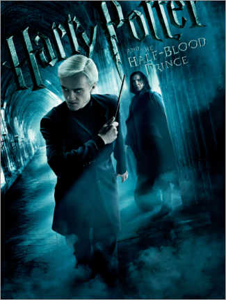 Poster  The Half-Blood Prince - Draco & Snape