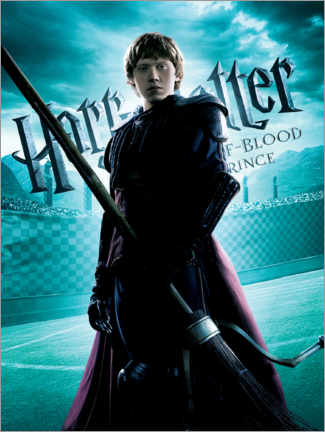 Tableau en PVC  The Half-Blood Prince - Ronald Weasley