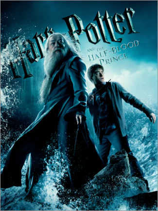 Poster  The Half-Blood Prince - Harry & Dumbledore