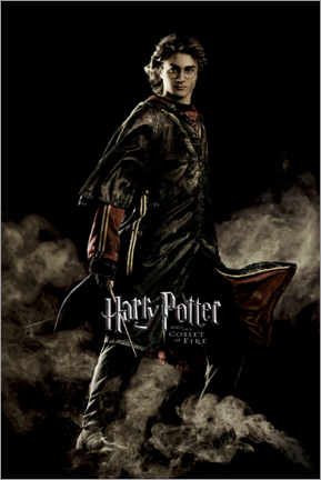 Poster  The Goblet of Fire - Harry Potter