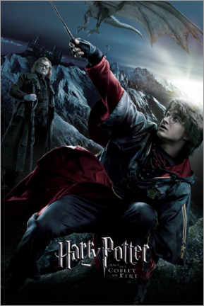Poster  The Goblet of Fire - Triwizard Tournament