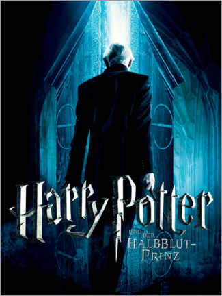 Poster  The Half-Blood Prince - Vanishing Cabinet