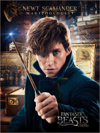 Tableau en bois  Fantastic Beasts and Where to Find Them - Newt Scamander