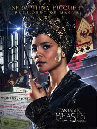 Poster  Fantastic Beasts and Where to Find Them - Seraphina Picquery