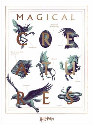 Tableau sur toile  Harry Potter - Magical Creatures