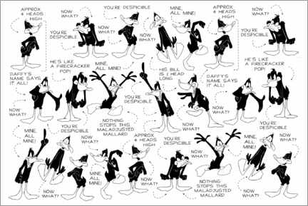 Poster  Daffy Duck - Expressions