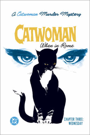 Tableau sur toile  Catwoman Mystery