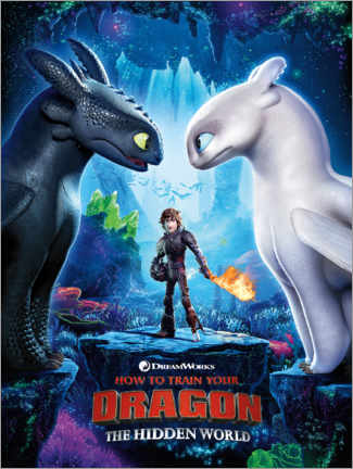 Poster  The Hidden world - Toothless & Light Fury
