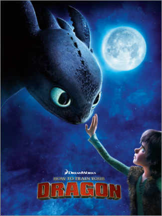 Tableau sur toile  How to train your dragon