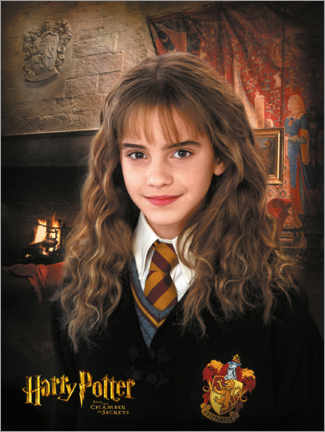 Tableau en verre acrylique  Hermione and the Chamber of Secrets