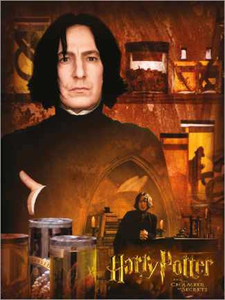 Poster Severus Snape and the Chamber of Secrets