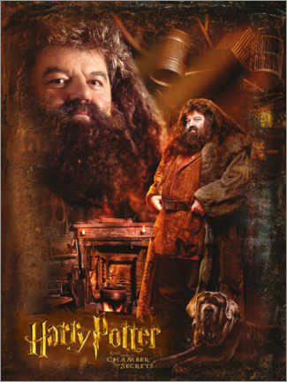 Poster Rubeus Hagrid and the Chamber of Secrets