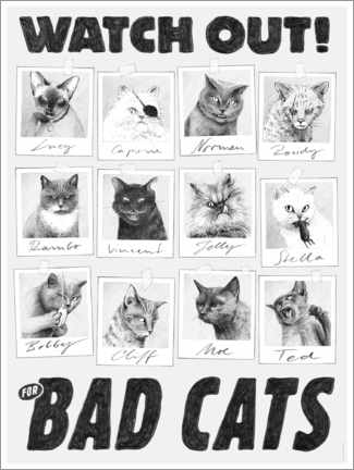 Poster  Watch out for bad cats - Janta Island