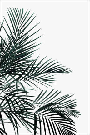 Poster Palm tree in the wind
