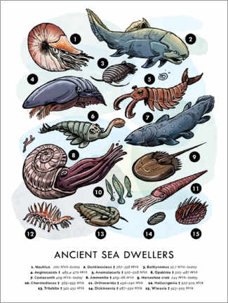 Poster  Ancient Sea Dwellers - Velozee
