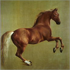 Sticker mural  Whistlejacket - George Stubbs