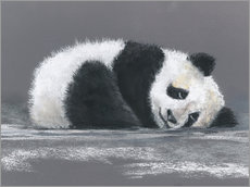 Sticker mural  Panda - Jitka Krause