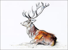 Sticker mural Lying Stag