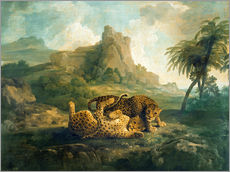 Sticker mural  Leopards at Play - George Stubbs