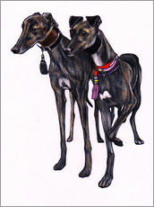 Sticker mural  Brindle greyhounds - Jim Griffiths