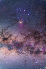 Tableau en plexi-alu  Scorpius with parts of Lupus and Ara regions of the southern Milky Way. - Alan Dyer