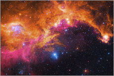 Robert Gendler - the seagull nebula