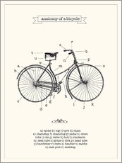 Sticker mural  Anatomie d'une bicyclette vintage (anglais) - Nory Glory Prints