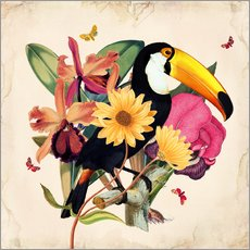 Sticker mural  Oh My Parrot XII - Mandy Reinmuth