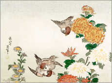 Tableau en plexi-alu  Sparrows and Chrysanthemums - Katsushika Hokusai