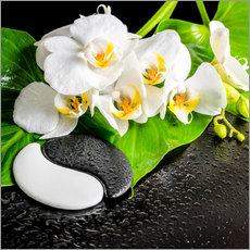 Tableau en plexi-alu  Spa arrangement with white orchid