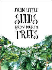 Sticker mural  From little seeds grow mighty trees - RNDMS