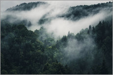 Sticker mural  Mystic forests with fog - Oliver Henze
