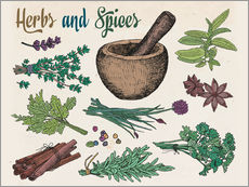 Sticker mural  Herbs and spices