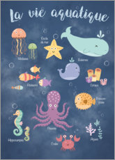 Poster  La vie aquatique - Kidz Collection