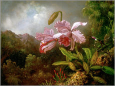 Tableau en plexi-alu  Orchidées dans la jungle - Martin Johnson Heade
